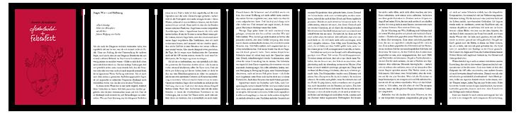 federleicht und FelsenFest Vorschau Blick ins Buch